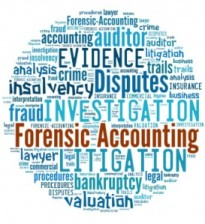 accounting fraud essays